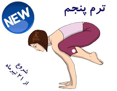 آموزش-یوگا-آسانا-سطح-5